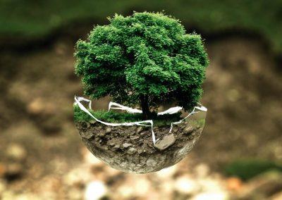 Környezetvédelmi technikus
